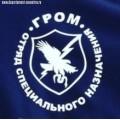 Футболка с эмблемой отряда специального назначения Гром МВД РФ